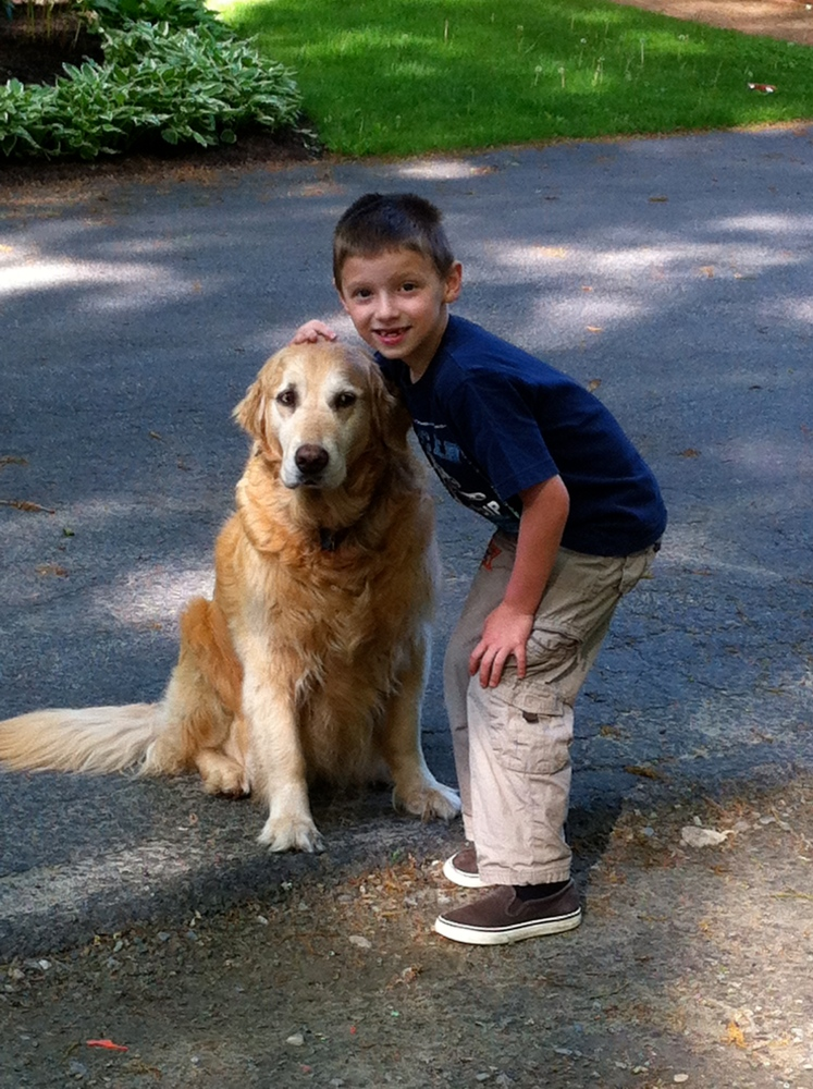 Life Lessons From A Golden Retriever (3/4)